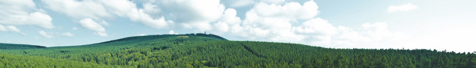 03 biedermann header harz